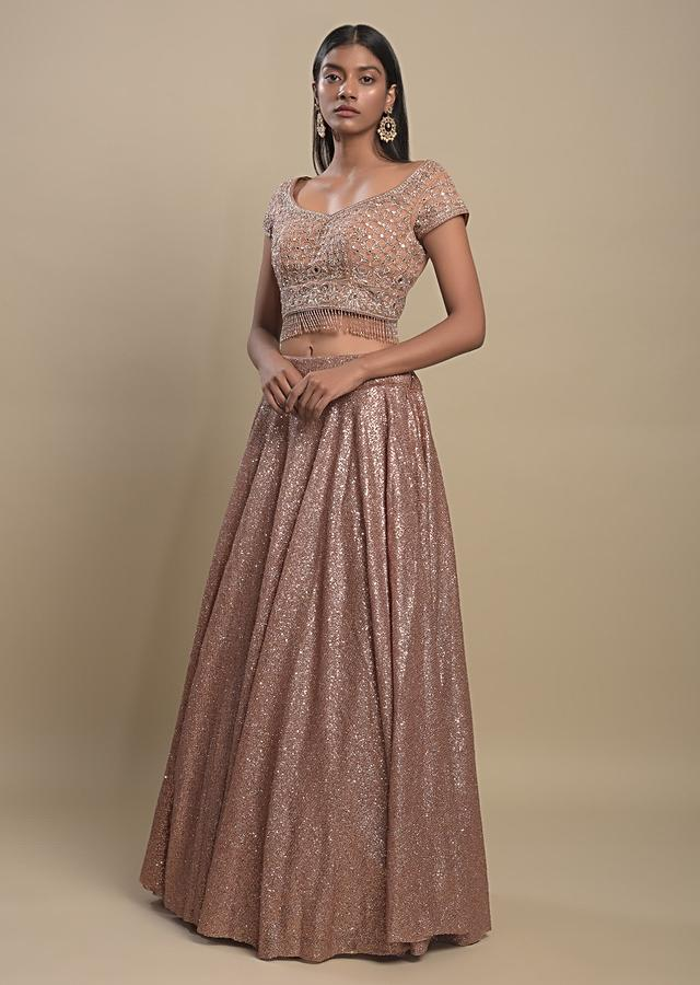 Copper Beige Lehenga Choli In Net Enhanced With Silver Sequins And Mirror Abla Work Online - Kalki Fashion