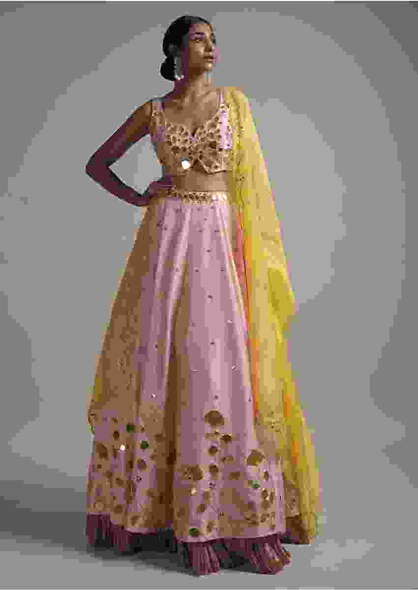 Blush Pink Lehenga Choli In Dupion With Floral And Leaf Cut Mirror Work Online - Kalki Fashion