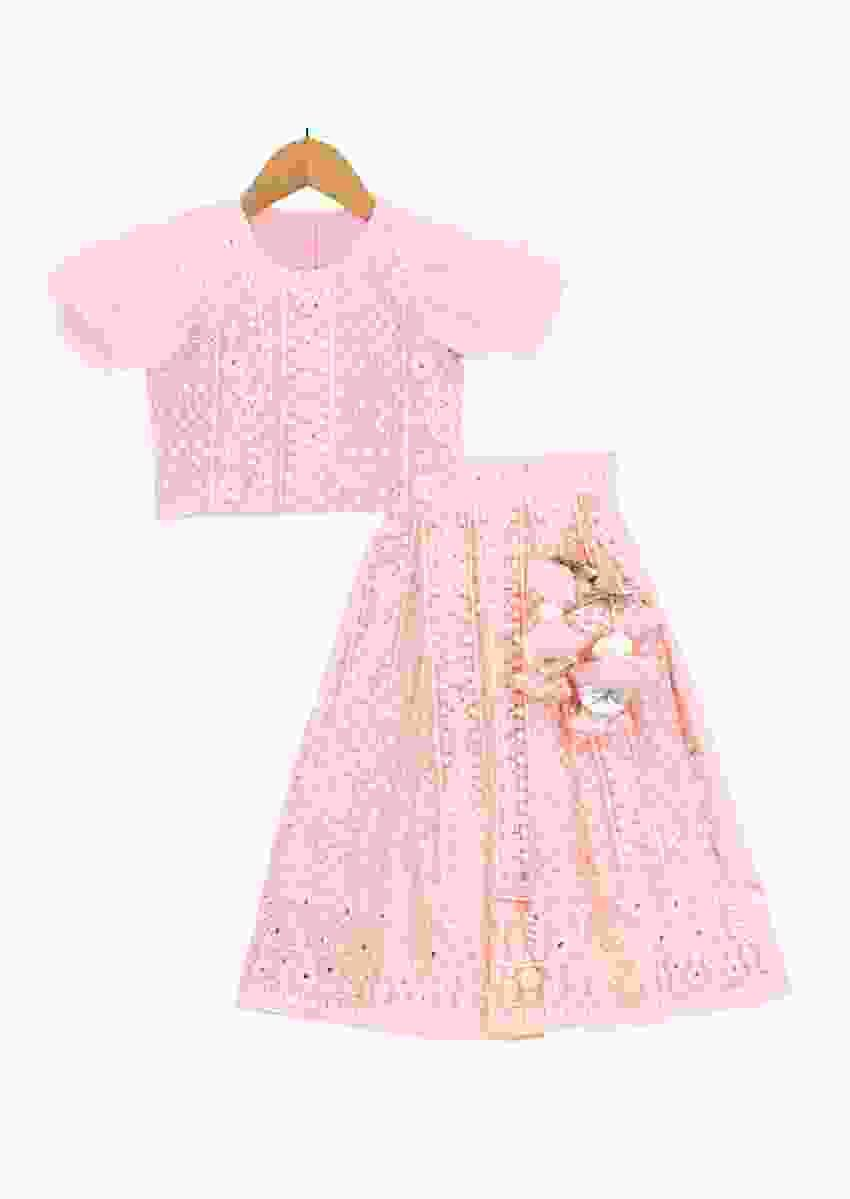 Pink lucknowi embroidered lehenga set with pearls and tassels Online - Free Sparrow