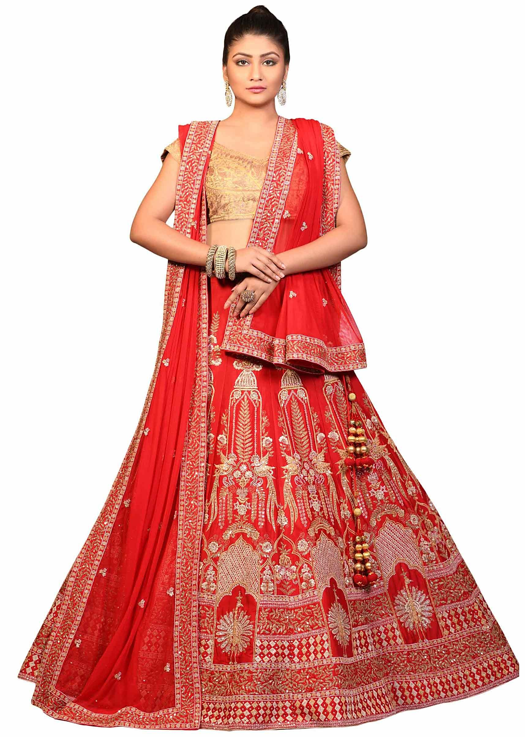 e3c8ce5c46 Red lehenga in chanderi silk with zari embroidery in silver and gold