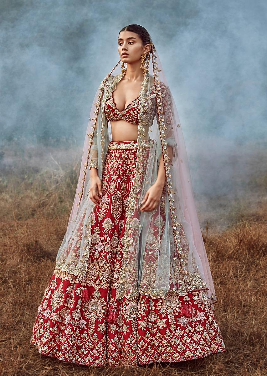 Buy Scarlet Red Lehenga Choli In Raw Silk With 3D Flowers And Cut Dana  Embroidered Summertime Flowers And Geometric Motifs Online - Kalki Fashion