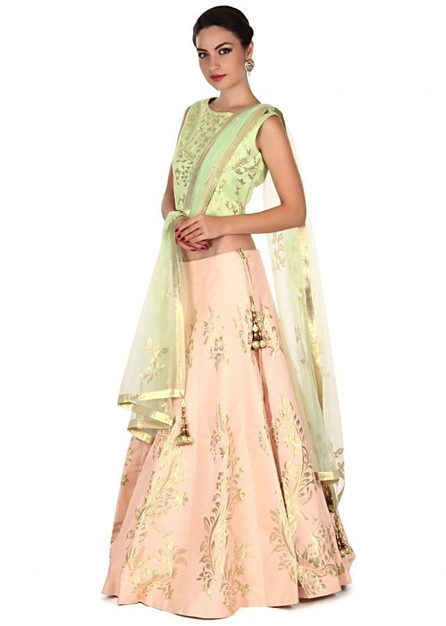 Light pink lehenga adorn in applique embroidery only on Kalki