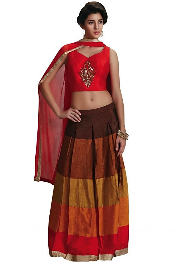 Multi color lehenga with cut dana embroidered blouse