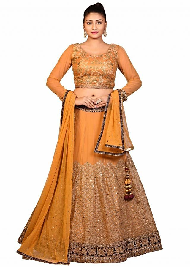 Mustard lehenga and stitched blouse in net with aari embroidery