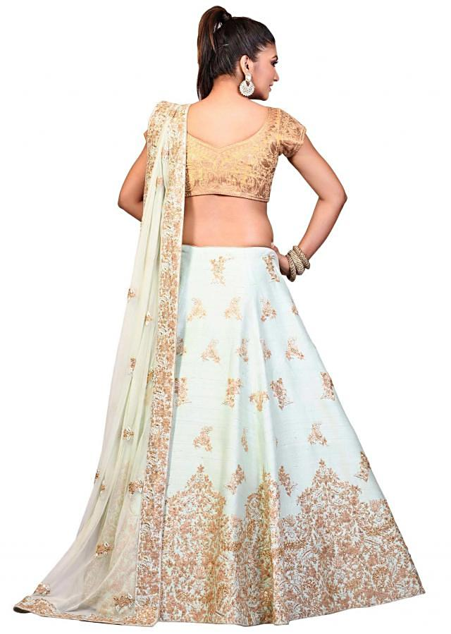 Sky blue lehenga features in raw silk with aari embroidery