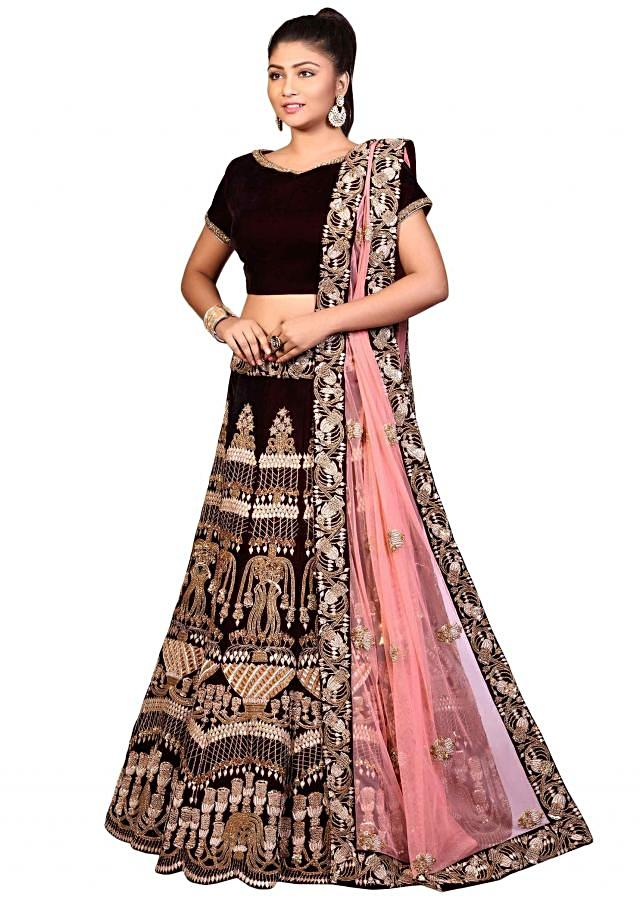 Wine lehenga with stitched blouse in velvet adorn in zardosi embroidery